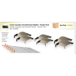 Lesser Canadas with Flocked Heads - Feeder Pack