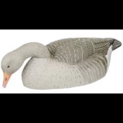 Fully Flocked Greylag shelss tollas liba