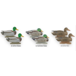 Mallards-Active Pack